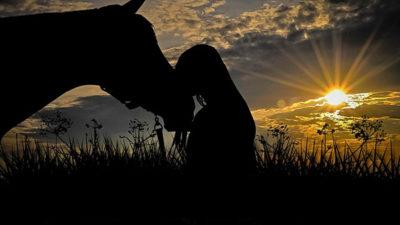 Foto på en häst och dess ryttare i solnedgången.