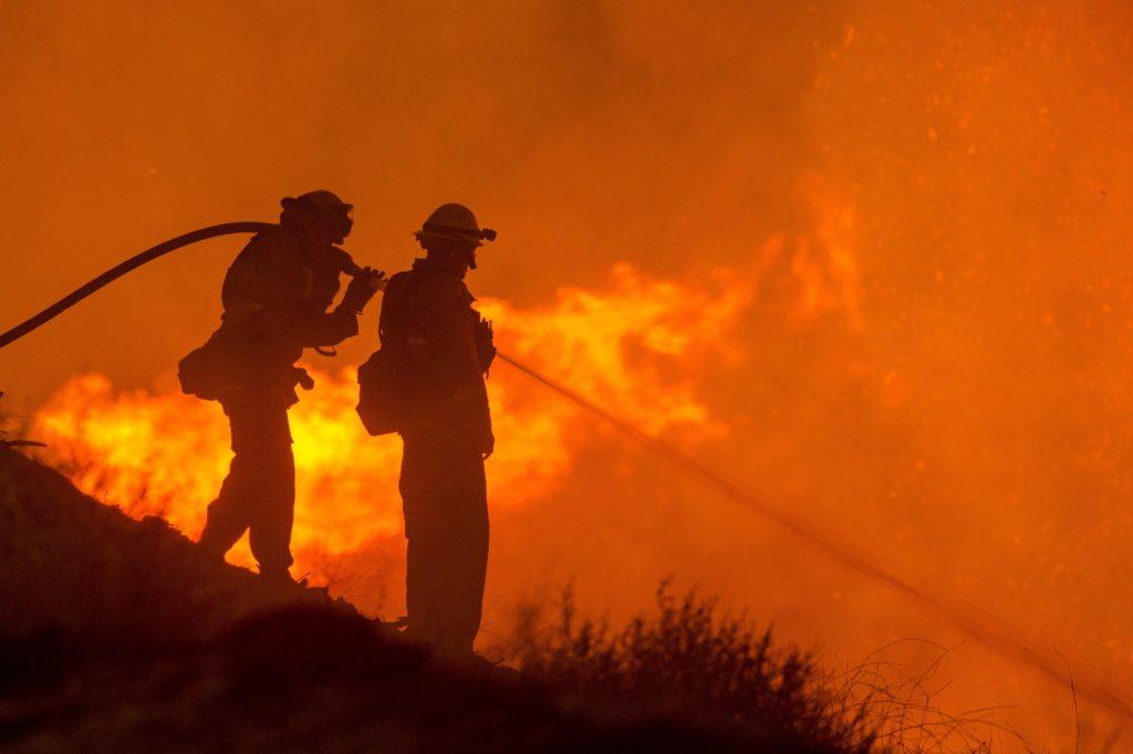 Brandmän som släcker en skogsbrand