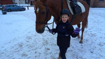Foto på en brun häst och en liten flicka som leder honom.