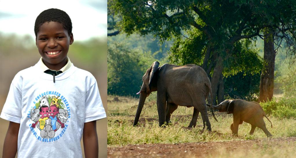 Ett skrattande barn och två elefanter i ett collage.