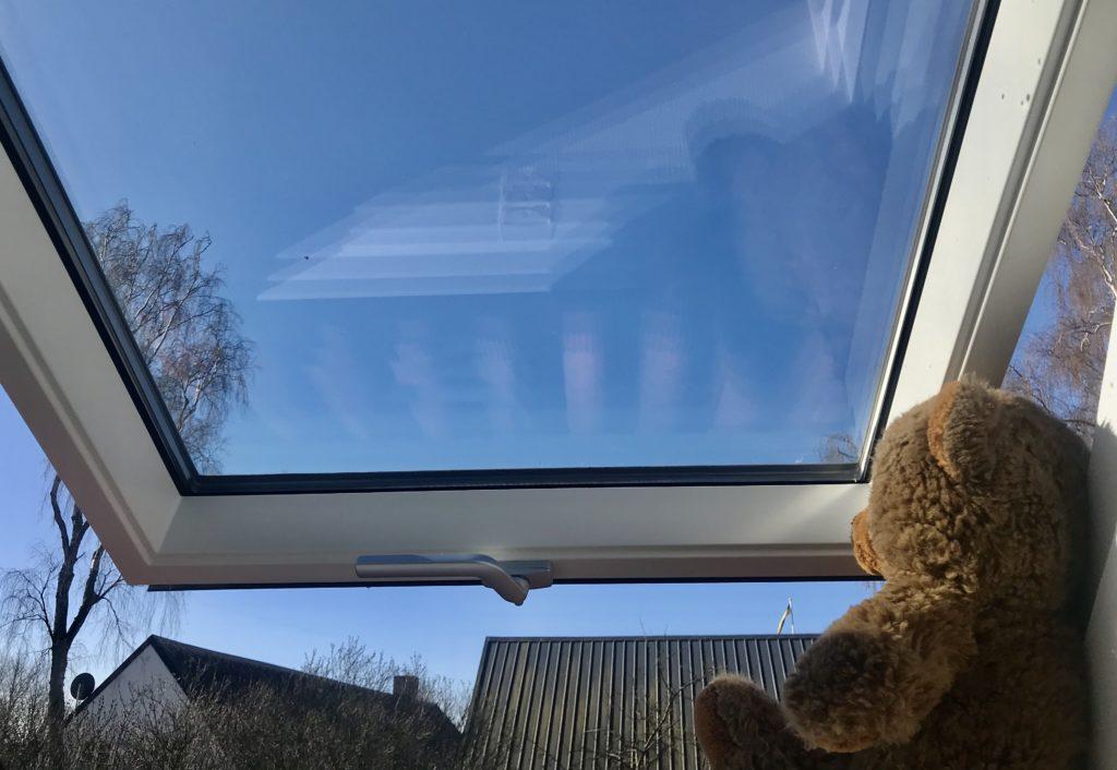 En nalle i ett fönster