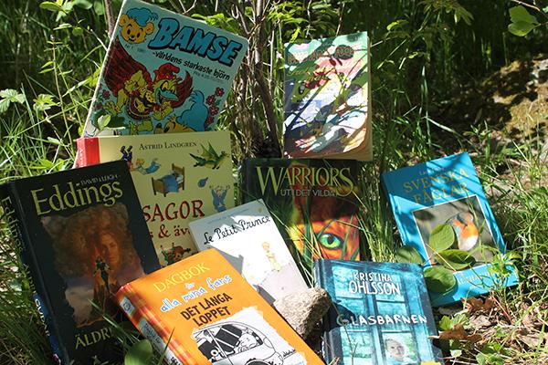 Foto på böcker och tidningar som ligger i gräset.