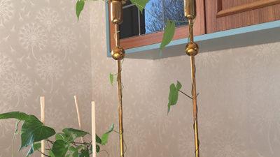 Växter som slingrar sig runt några ljusstakar.