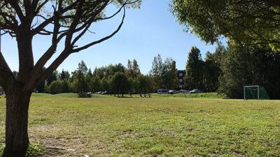 En stor öde gräsmatta med två mål.