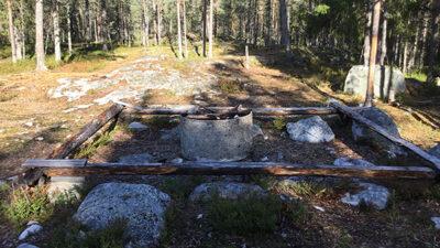 En eldstad i skogen med bänkar runt omkring.