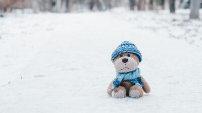 Ett gosedjur som sitter i snön