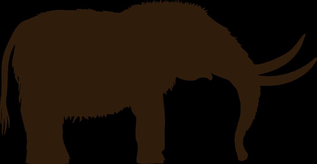 En mammut