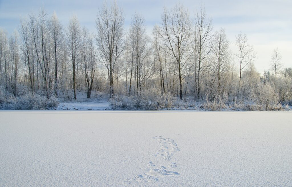 Fotspår på en sjö som frusit