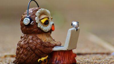En uggla som sitter vid en dator