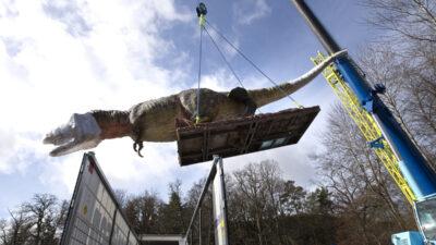 En stor dinosaurie som lyfts ur en lastbil med en lyftkran.