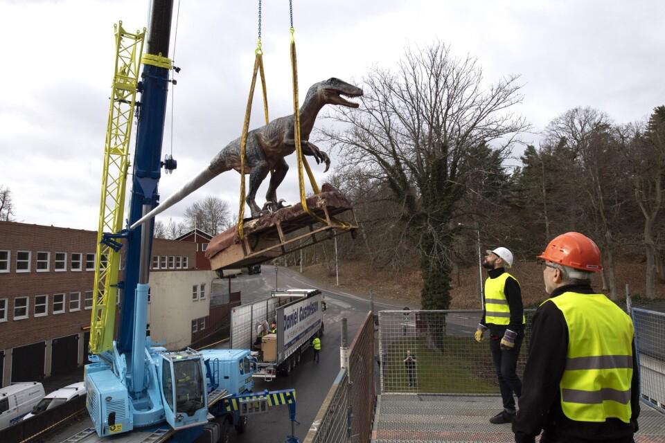 En dinosaurie som lyfts med en kranbil.
