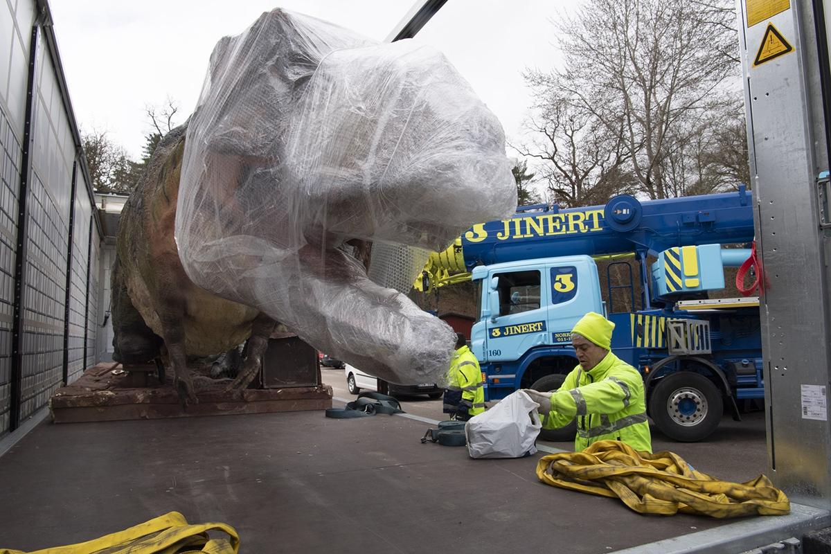 En jättestor gapande och inplastad dinosaurie på ett lastbilsflak.