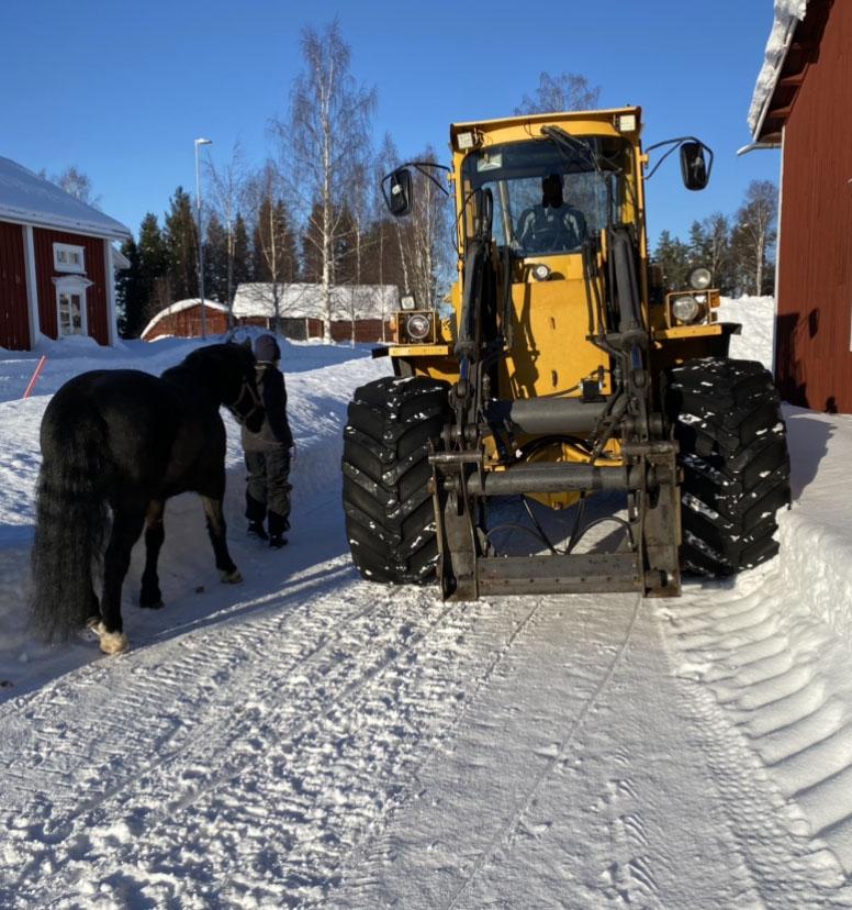 En traktor och en häst på en vinterväg.