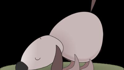 En sniffande hund