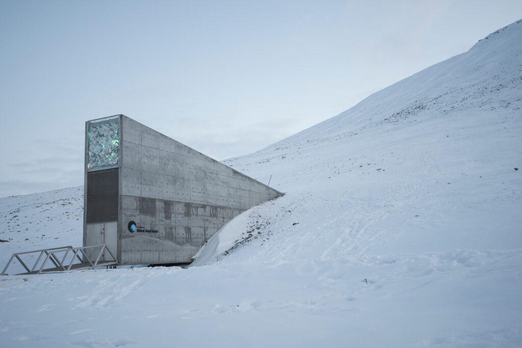 Musik ska sparas på Svalbard.